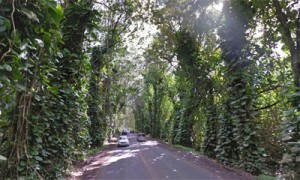 Hawaii Scenic Byways